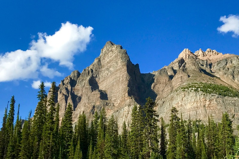 Grassi Ridge climbs the sun/shade ridge on Wiwaxy Peak.