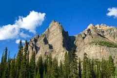 Wiwaxy Peak, Lake O'Hara area, Lake Yoho National Park, BC.