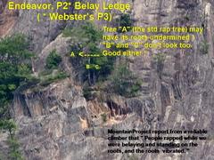 Rock Climbing Photo: Suspect Rap Tree