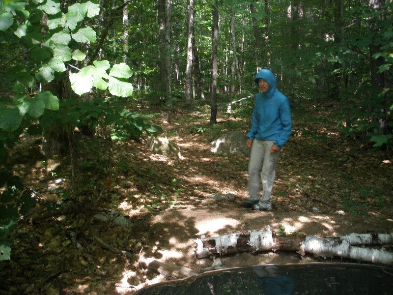 Rick's Road Parking & Logging Rd