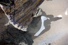 Rock Climbing Photo: Looking down Cardiac Arete, with rather phallic sh...