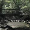 Fern Creek bridge on the Fern Creek approach to Endless Wall.