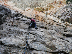 Rock Climbing Photo: Climber on Heart Attack and Vine.
