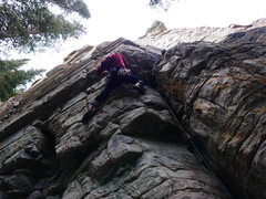 Rock Climbing Photo: Moving into the steep crux of Reclining Pine Direc...