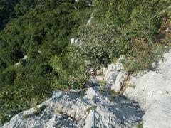Rock Climbing Photo: Navigating the bushiness
