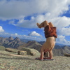 Huge, flat, granite slab summit of Jagged Mountain.