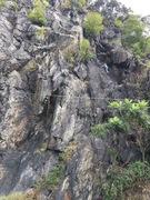 Rock Climbing Photo: Pretty lady high on Shady Lane.