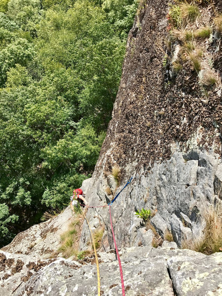 Second pitch of Baskerville Terrace