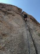 Rock Climbing Photo: Classic butt shot
