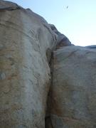 Rock Climbing Photo: The bear-grass pitch.