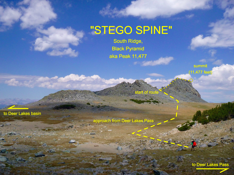Stego Spine viewed from the meadow at Deer Lakes Pass.