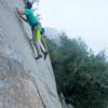 Robin Climbing 5.10 face