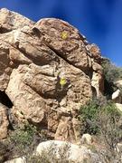 Rock Climbing Photo: Frigid Digit