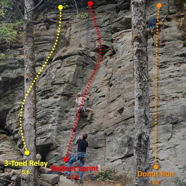 3Toed Relay, Bigfoot Sprint, and Donut Run. First Three routes you see when entering the Waka Beach crag.