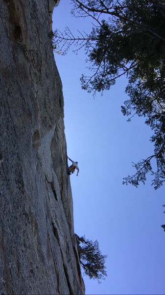 Shaking out after flailing on the 2-bolt crux on lead.