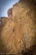 Rock Climbing Photo: Zebra/Zion