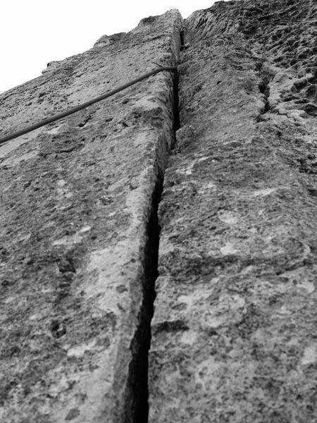 Beaver Wall Splitter!