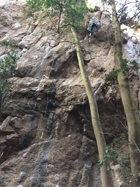 Climber topping out on Taco de Gato