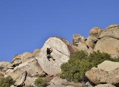 The enigma of quartz climbing.