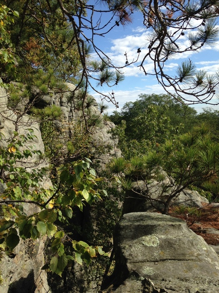 The top of the Qual Wall at Governor Dodge State Park. Topped out from Tramadol (5.8).