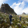 Aberdares National Park - lots of wild remote climbing out here!