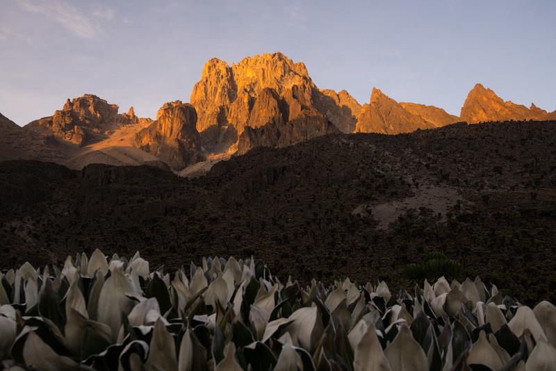Mt Kenya alpen glow