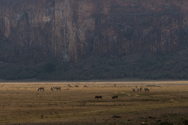Hell's Gate with the zebras and warthogs roaming around below us