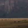 Lukenya with the zebras and warthogs roaming around below us