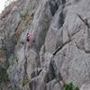Animal World, Boulder Canyon