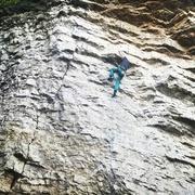 Rock Climbing Photo: Cruxing on Malaria