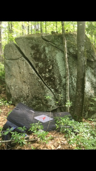 Nice looking rock