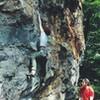 the start of Salamander Flip-Flop, Denny Cove
