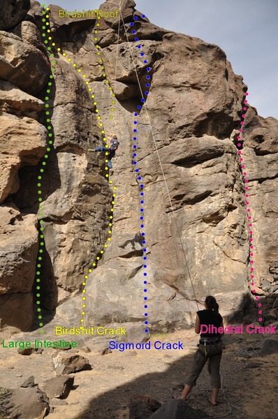 One toprope - Three routes (left to right):<br> - Large Intestine 5.9<br> - Birdshit Crack 5.7 (and Birdshit Roof  5.10)<br> - Sigmond Crack 5.10