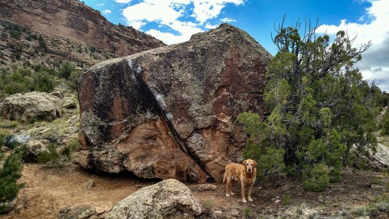 Breakfast Boulder.