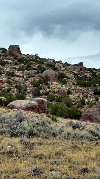 The climbing area.
