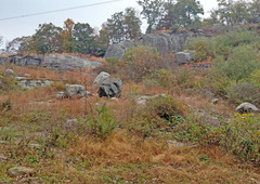 Rock Climbing Photo: Looking up right (north) from exit of trail from d...