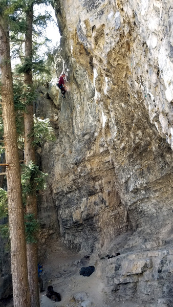 Scott Leeper cruising the crux