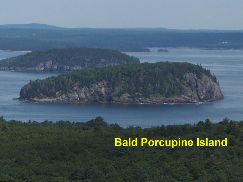 """Bald Porcupine Island - """"Gotta"""" be some climbing there"""