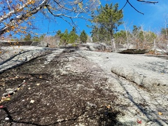 Rock Climbing Photo: Base of Broken Brush. Head up to the right of the ...