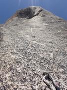 Rock Climbing Photo: bolt ladder