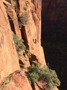 Rock Climbing Photo: Dennis in the morning light after traversing from ...