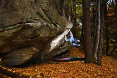 Autumn in Massachusetts!