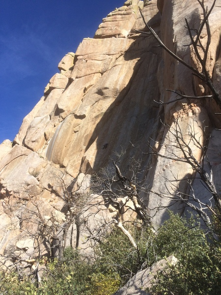 Gabe on his way up this -- at the first bolt, about 20-25 feet above his last gear. Not surprisingly this isn't done much.