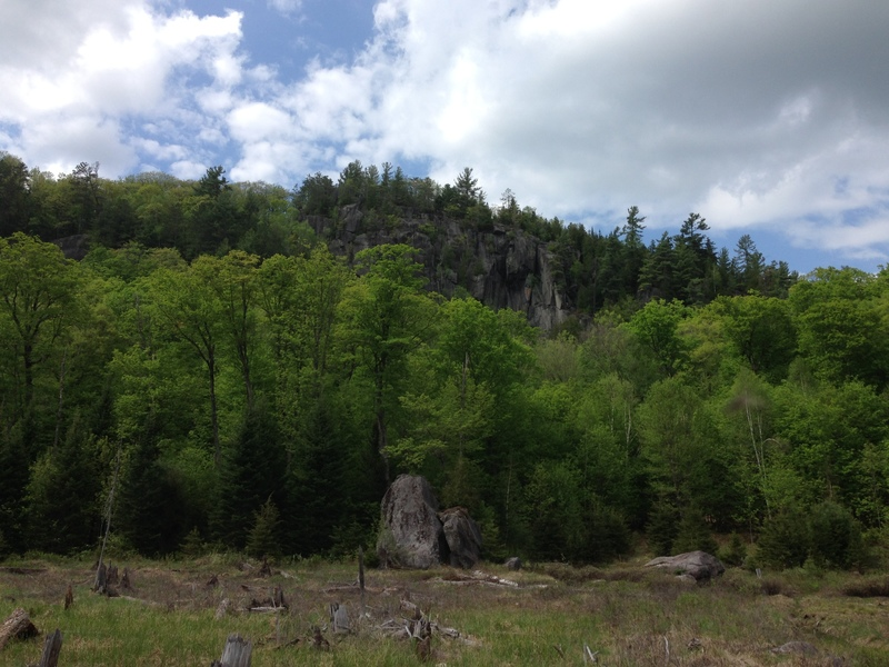 Cliff from across the swamp