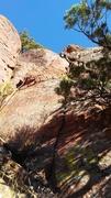 Rock Climbing Photo: Climb the crack.