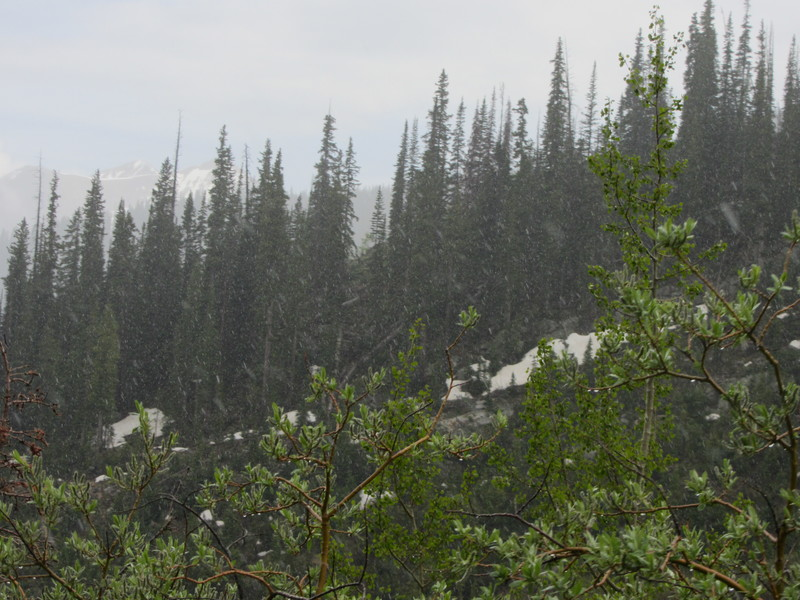 Summer snowfall in Crested Butte.