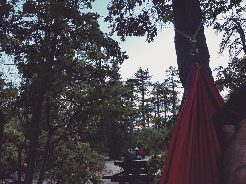 Campsite 6 chilling.