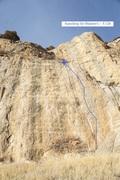 Rock Climbing Photo: Searching for Blanton's (November 2017)