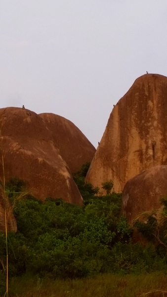 Some of the larger boulders with monkeys dotting the skyline for scale
