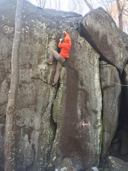when it's hunting season, wear orange :-)